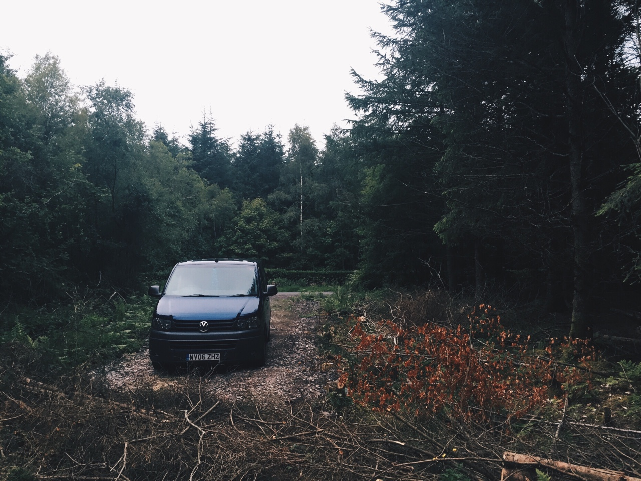 Wild Camping in a small wood